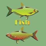 Fischen und Illustration stockfotos