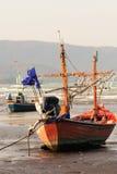Fischenausläufer Lizenzfreies Stockfoto