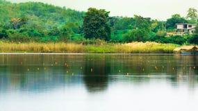 Fischenspiel lizenzfreies stockfoto