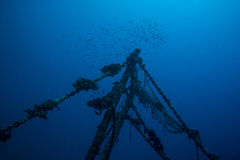 Fischenwrack Stockbilder