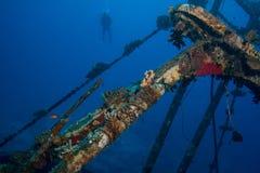 Fischenwrack Lizenzfreies Stockfoto