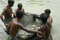 fischer Lizenzfreies Stockbild