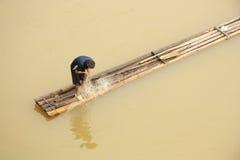 Fischer in Asien Stockbild