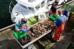 Fischer auf dem Pier Stockfotos