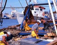 Fischer auf Schleppnetzfischer, Garrucha, Spanien lizenzfreies stockbild