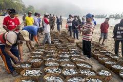 Fischer holen ihren Fang, um unterzustützen Lizenzfreie Stockfotos