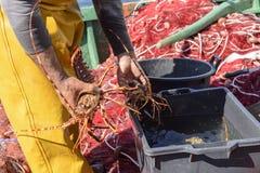 Fischer im Hafen stockfotografie