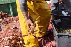Fischer im Hafen lizenzfreies stockbild