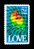 Fischer\'s Lovebird (Agapornis fischeri), Love serie, circa 1991. MOSCOW, RUSSIA - NOVEMBER 24, 2017: A stamp printed in USA shows Fischer\'s Lovebird (Agapornis Stock Photos