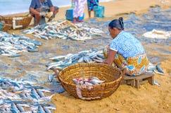 Fischer und Fischereitätigkeiten in Sri Lanka Lizenzfreie Stockfotos