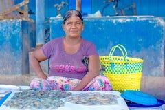 Fischer und Fischereitätigkeiten in Sri Lanka Lizenzfreies Stockfoto