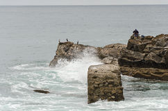 Fischer und Kormorane Stockfoto