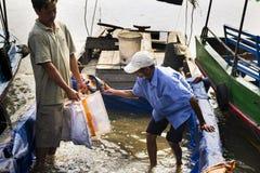 Fischer verkauft Fische auf Boot am 14. Februar 2012 in meinem Tho, Vietnam V Lizenzfreie Stockfotos