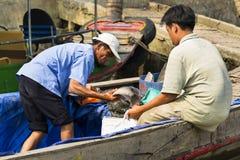 Fischer verkauft Fische auf Boot am 14. Februar 2012 in meinem Tho, Vietnam V Lizenzfreie Stockbilder