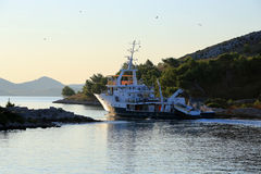 Fischerboot, das zum Haupthafen mit vielen Seemöwen, herein zurückgeht Lizenzfreies Stockfoto