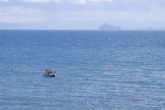 Fischerboot in der Förde von weiter Stockbild