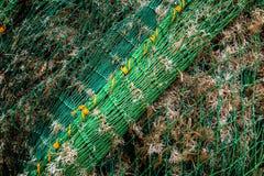 Fischerboot-Netze und trockene Meerespflanze stockfotos