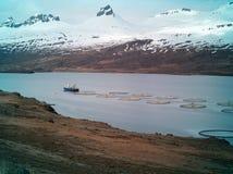 Fischerboot- und Fischfarmen, Island Stockbild
