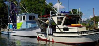 Fischerboote auf Liegeplatz stock footage
