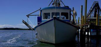 Fischerboote auf Liegeplatz stock video footage