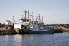 Fischerboote in Bonavista beherbergten, Neufundland, Kanada lizenzfreies stockfoto
