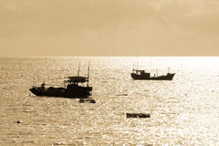 Fischerboote im intertidalen Küstengebiet Stockbild