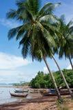 Fischerboote unter palmtrees Lizenzfreie Stockbilder