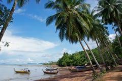Fischerboote unter palmtrees Lizenzfreie Stockfotos