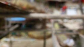 Fischerdorf in Papua-Neu-Guinea stock video