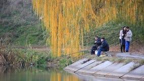 Fischerei stock video