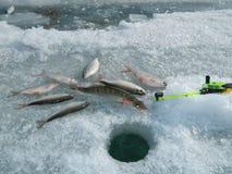 Fischerei Stockfotos