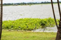 Fischerei auf dem Reservoir Lizenzfreie Stockfotos