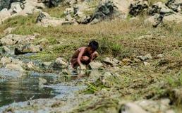 Fischerei in den Kindern stockbilder
