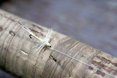Fischerei der Fliege Lizenzfreies Stockfoto