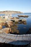 Fischerei des Ufers Stockfoto