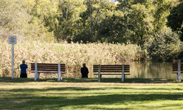 Fischerei an einem sonnigen Tag in Gardners-Park lizenzfreies stockfoto