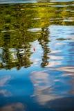 Fischerei in einer Reflexion stockfotografie