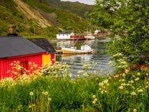 Fischerei für Farbe Lizenzfreie Stockfotografie