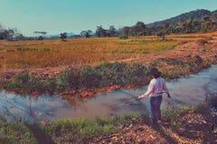 Fischerei im Teich stockbild