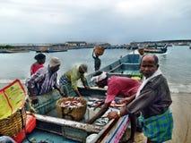 Fischerei in Indien Lizenzfreies Stockfoto