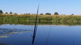 Fischerei mit den Tönen der Natur stock video footage
