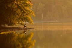 Fischerei am Sonnenuntergang Stockfotos
