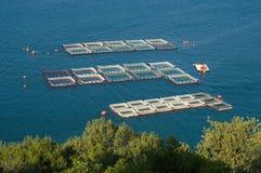 Fischereien Stockbilder