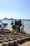 Fischereien sind auf dem Strand in vielen Körben, die auf das Laden auf den LKW zur Verarbeitungsanlage warten Lizenzfreie Stockfotografie