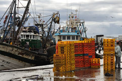 Fischereihafen in Essaouria, Marokko Lizenzfreie Stockbilder