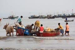 Fischereihafen in Indien lizenzfreie stockbilder