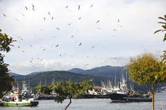Fischereihafendorf Portosin Stockfoto