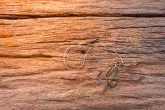 Fischereihaken auf hölzernem Hintergrund lizenzfreie stockbilder