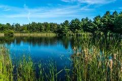 Fischereiteich am Alaun-Nebenfluss in Mittel-Ohio Lizenzfreie Stockbilder