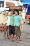 Fischerinnen in Indien stockfotografie